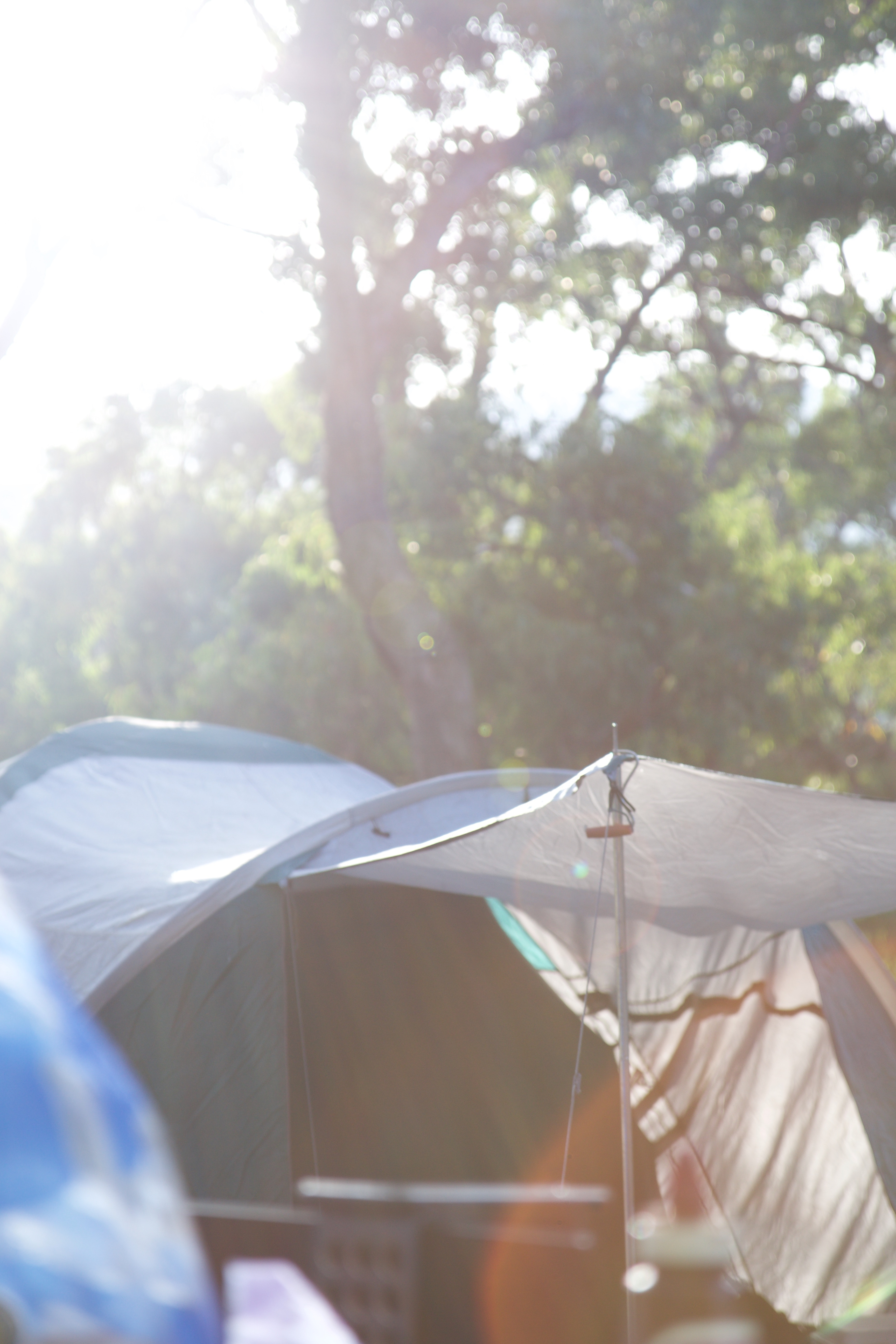 Tent C&ing Tips for Families & Tent Camping Tips for Families | DETER Outdoor Skin Protection